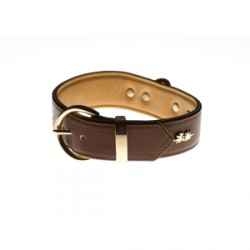 "Collier Million Dog ""Cream Coffee"""