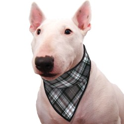 Collier bandana rafraîchissant scottish grey